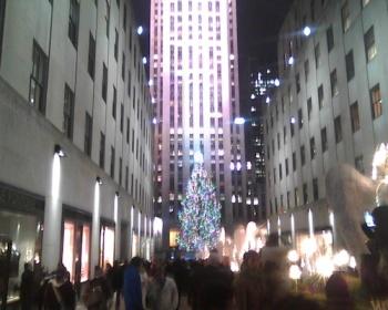 christmas.tree